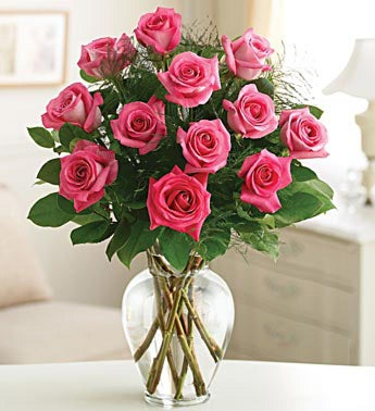 Rose Eelegance? Premium Long Stem Pink Roses