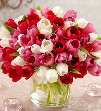 Sweetest Love Tulips, 60 Stems