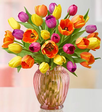 Radiant Tulips for Mom , 15-30 Stems
