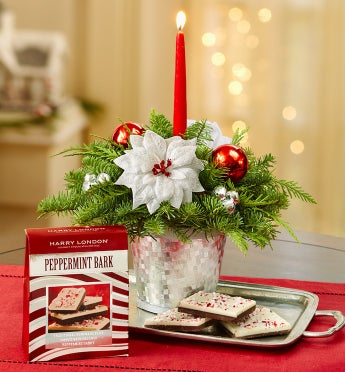 Season?s Greetings Evergreen Centerpiece