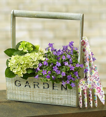 Gardening Delight
