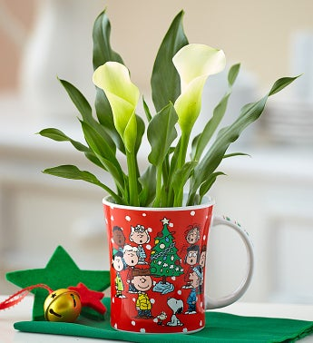Charlie Brown� Christmas Calla Lily