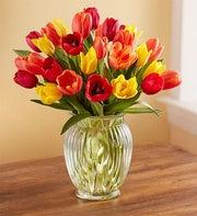 Autumn Tulip Bouquet, 15 - 30 Stems