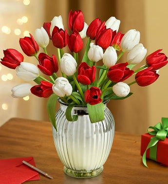 Jolly Holiday Tulips, 30 Stems