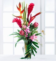 Tropical Paradise? Arrangement
