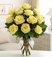 Rose Elegance? Premium Yellow Roses