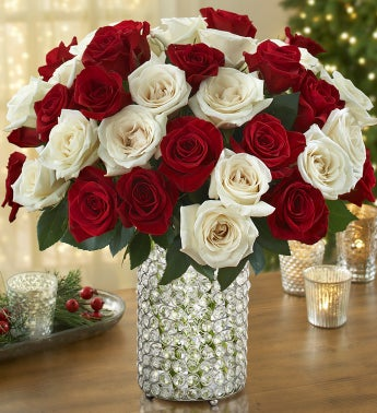 Peppermint Rose Bouquet, 36 Stems with Prism Vase