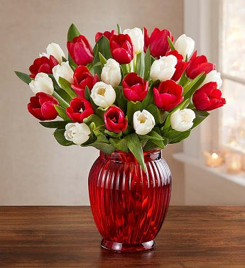 Holly Jolly Tulips, 30 Stems