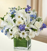 Blue and White Cube Arrangement
