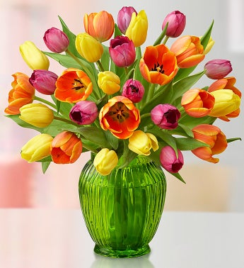 Mother's Day Tulips, 30 Stems