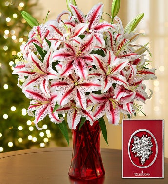 Candy Cane Lilies with Waterford� Ornament