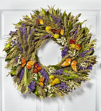 Preserved Butterfly Wreath - 22""