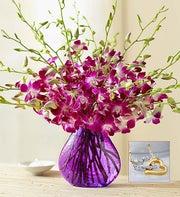 Exotic Breeze™ Orchids, 10-20 Stems