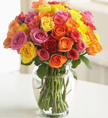 36 stems multicolored sweetheart roses