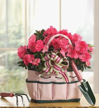 pink azalea in pink gardening tote