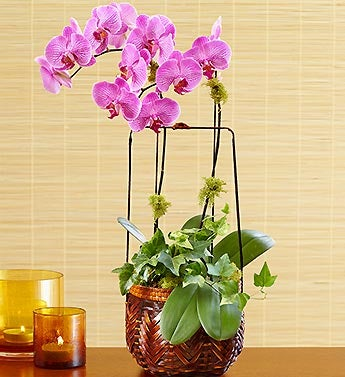 Balinese Orchid Basket