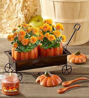 Festive Pumpkin Hayride Planter
