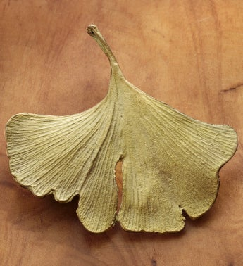 Gingko Pin
