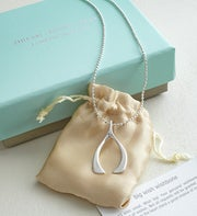 Big Wish Wishbone Necklace