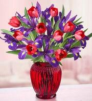 Bunches of Love Tulip & Iris