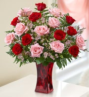 Shades of Pink and Red? Premium Long Stem Roses