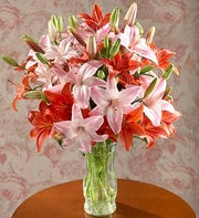 Assorted Lily Bouquet in a Vase