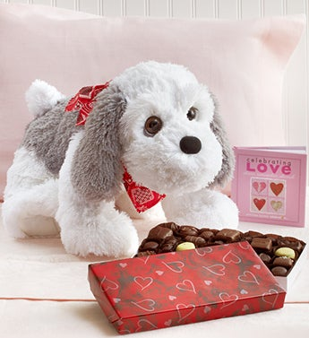Sweet Puppy with Free Chocolate