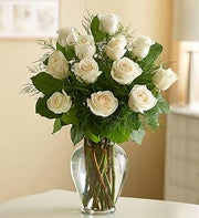 One Dozen White Long Stem Roses